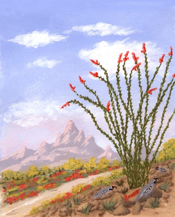 Desert Sunsets Southwest Paintings Arizona Landscapes By