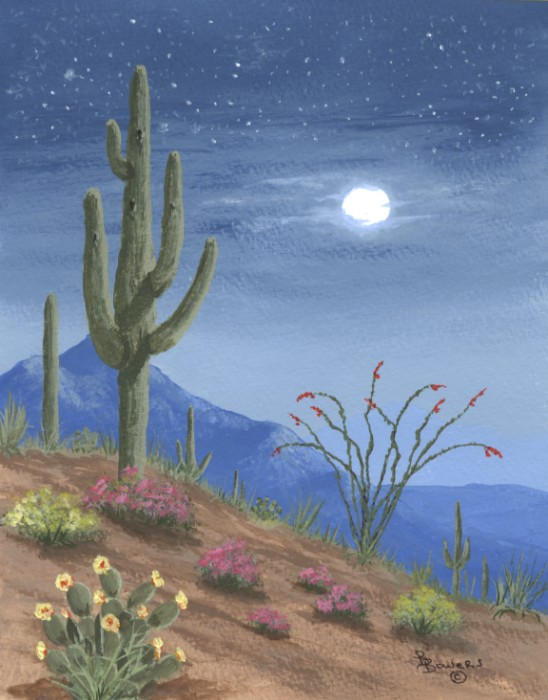Desert Sunsets Southwest Paintings Arizona Landscapes By
